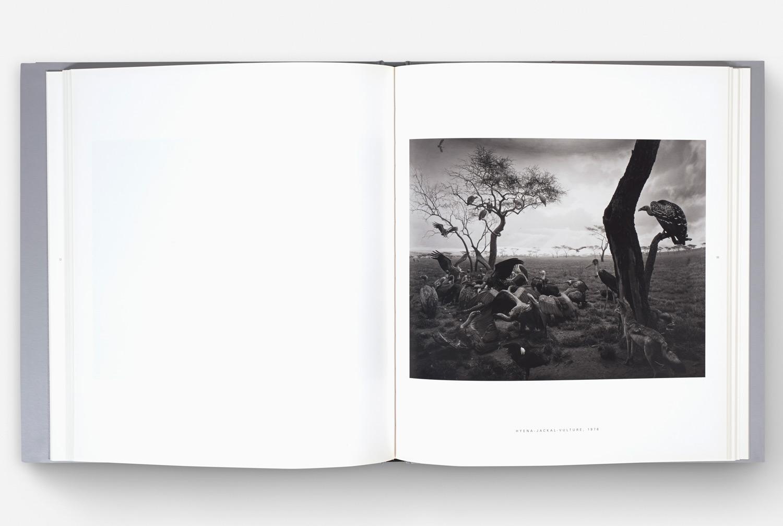 Jed Johnson Fabric Hiroshi Sugimoto Book Series Matsumoto Incorporated